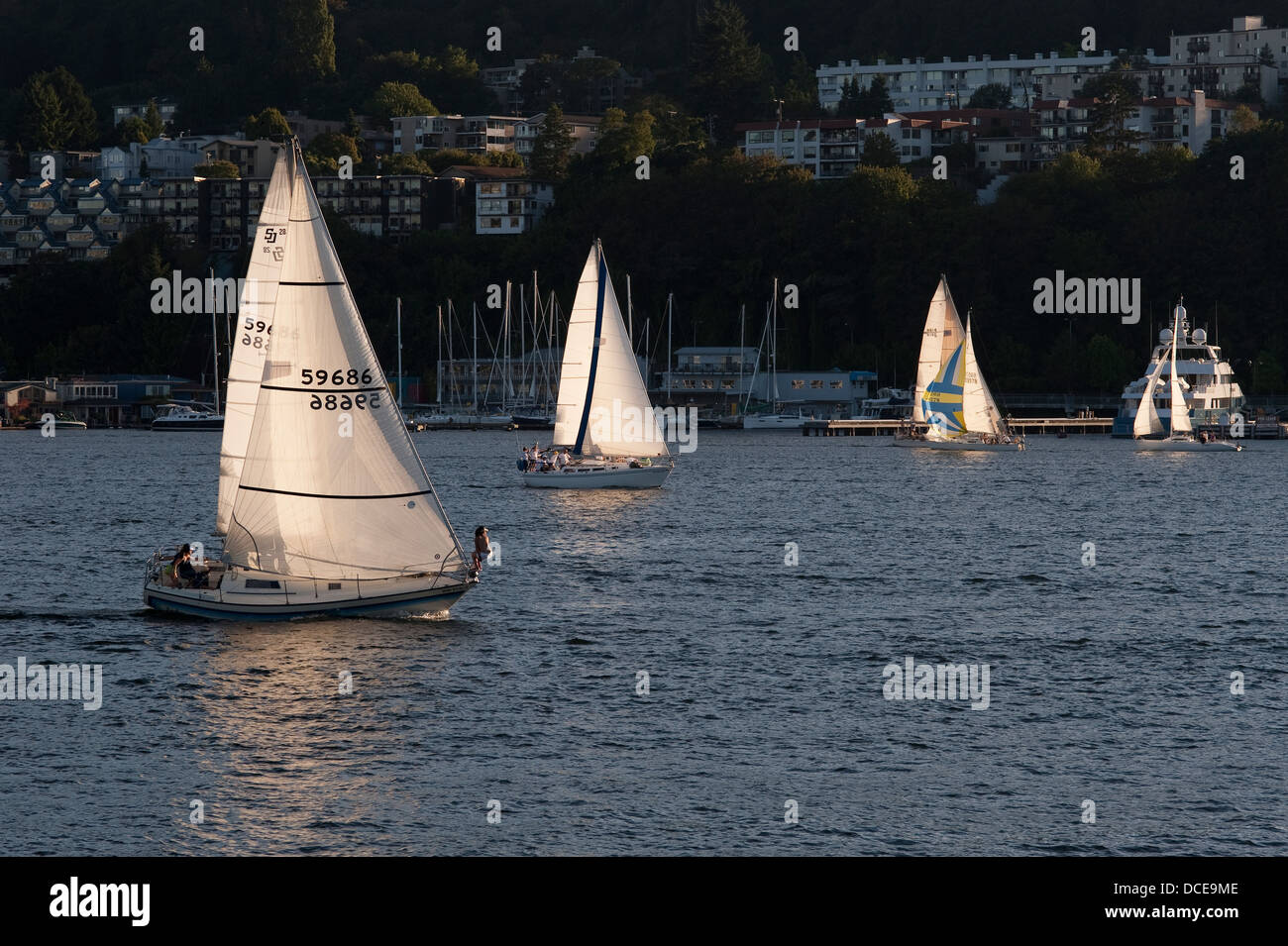 Sailboat race on Lake Union Seattle Washington State - Stock Image