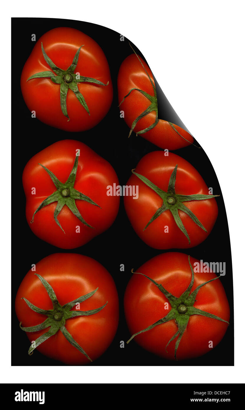 tomatoes curl distortion - Stock Image