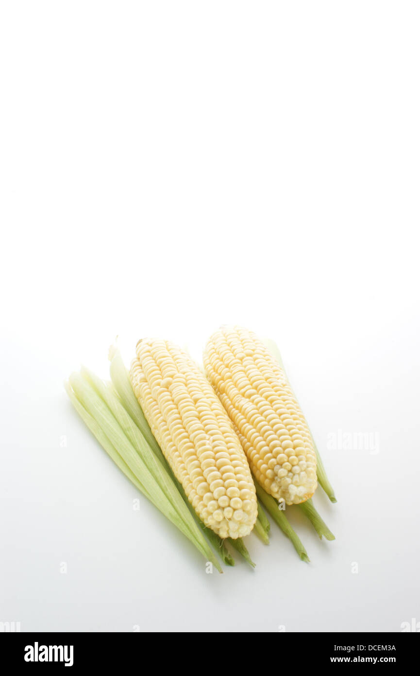 Sweet Corn Field Stock Photos & Sweet Corn Field Stock Images - Alamy