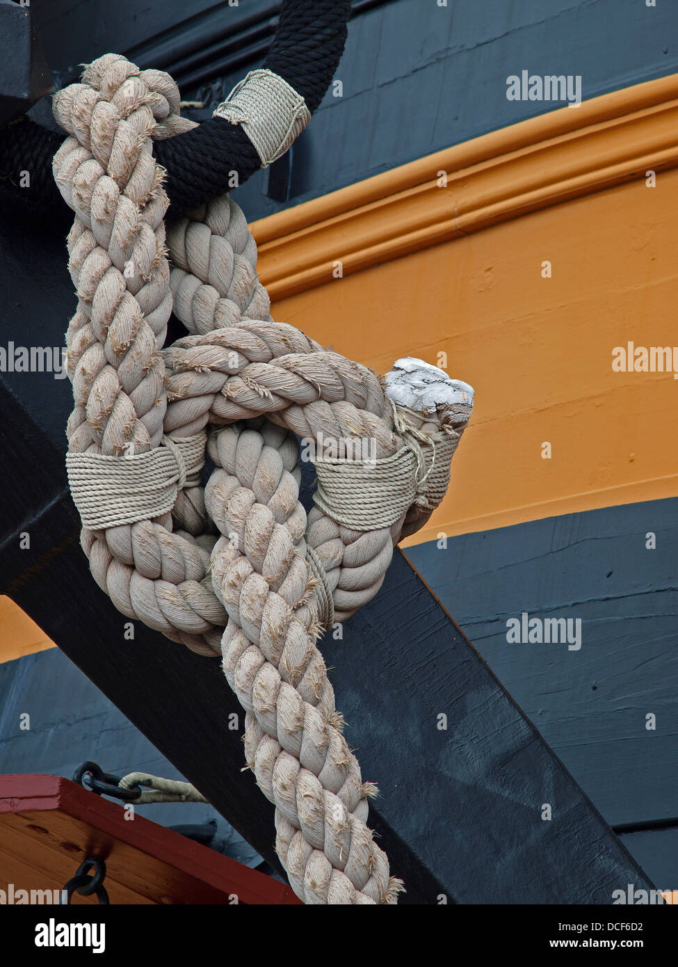 Big Knot - Stock Image