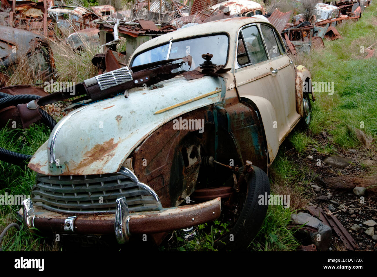 Acres of ground covered with every make of old cars mainly Stock ...