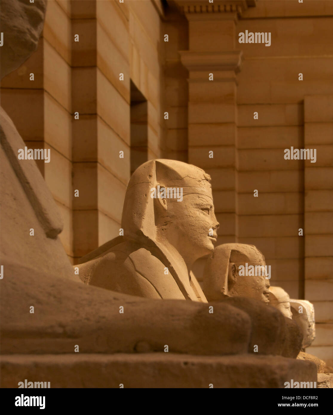 Six sphinxes lining the way to the Serapeum of Saqqarah, Egypt - Stock Image