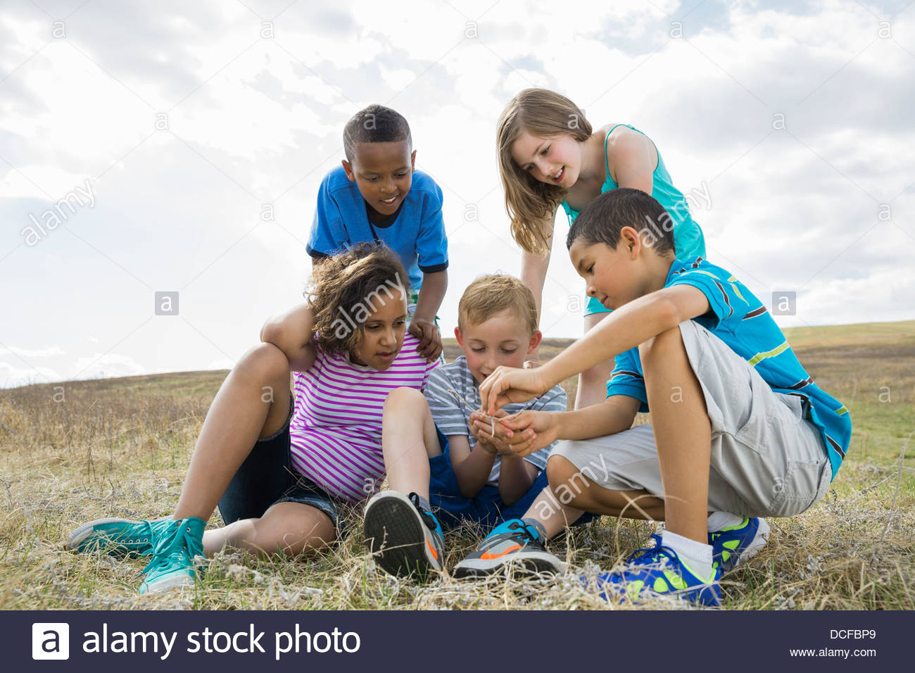 Schoolchildren exploring insects during field study - Stock Image