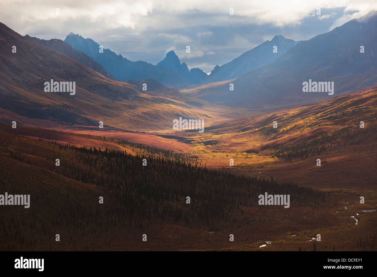Sunrise Lights The Colors Of Autumn Over Klondike Valley In Tombstone Territorial Park;Yukon Canada - Stock Image