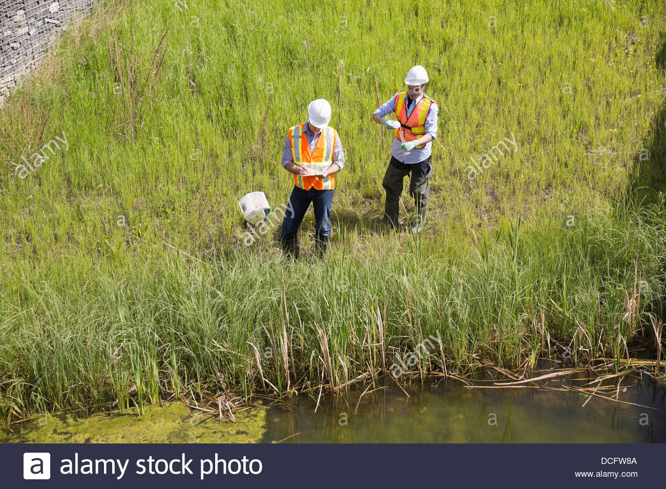 Ecologists exploring riverbank - Stock Image