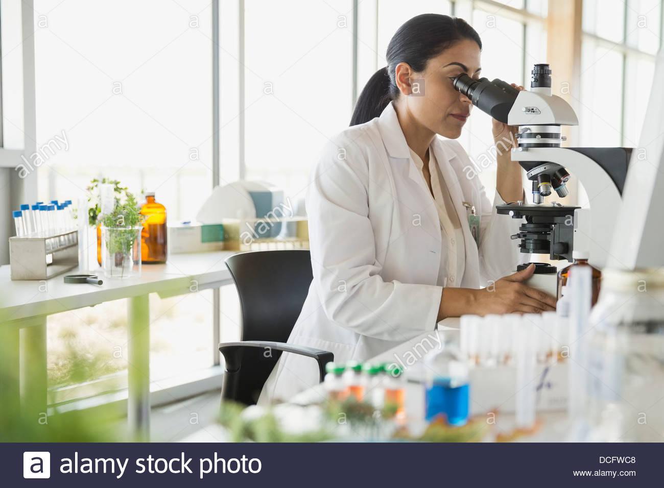 Botanist looking through microscope - Stock Image