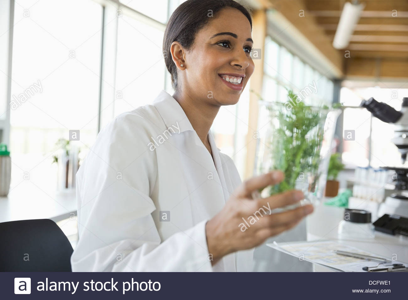 Botanist holding plant samples in laboratory - Stock Image