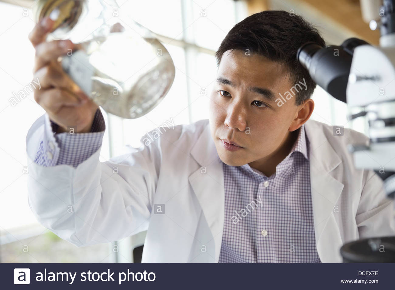 Technician analyzing water samples - Stock Image