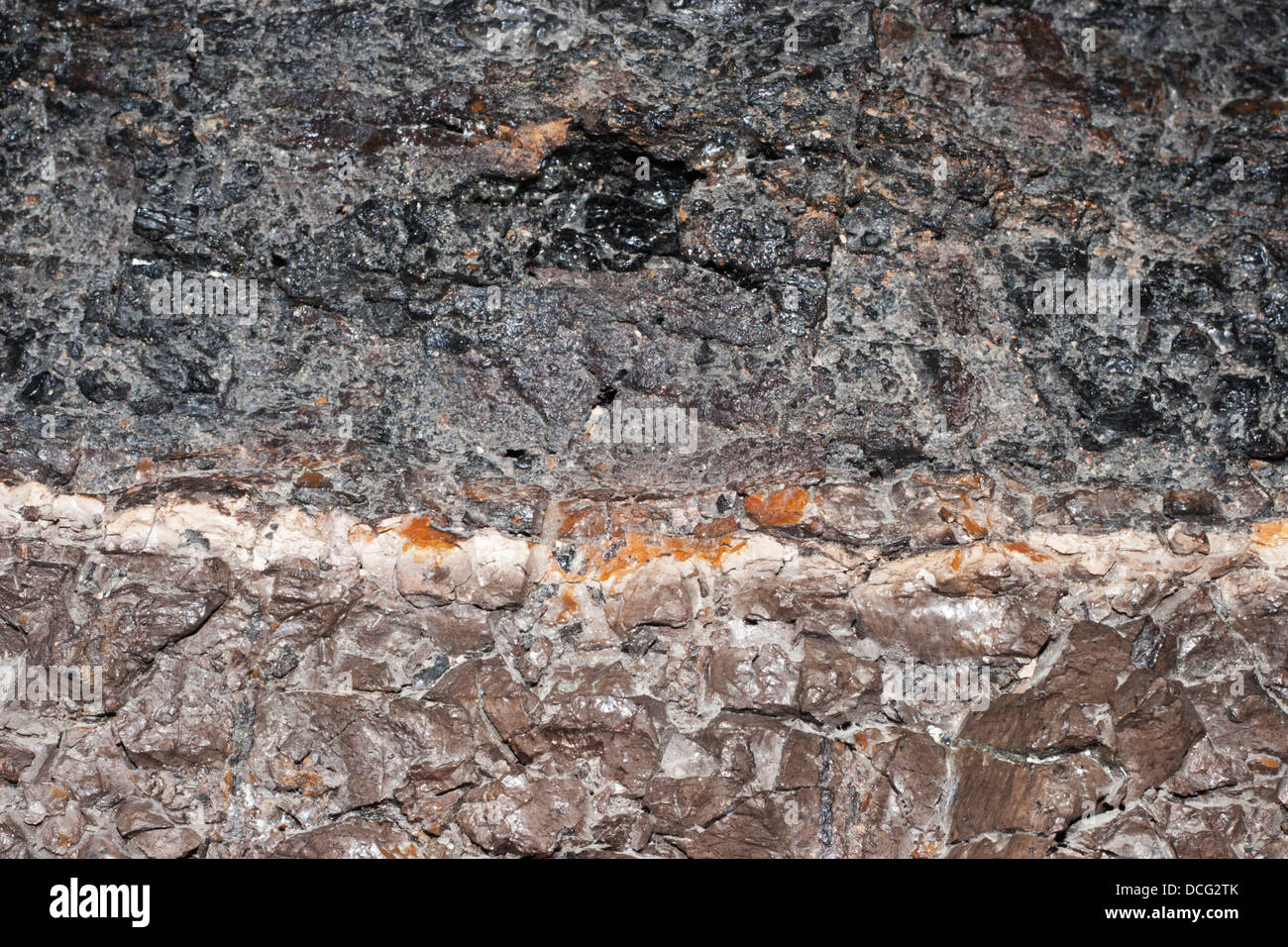 Sample of the K-T (Cretaceous-Tertiary) boundary from the Frenchman River Valley in Saskatchewan - Stock Image