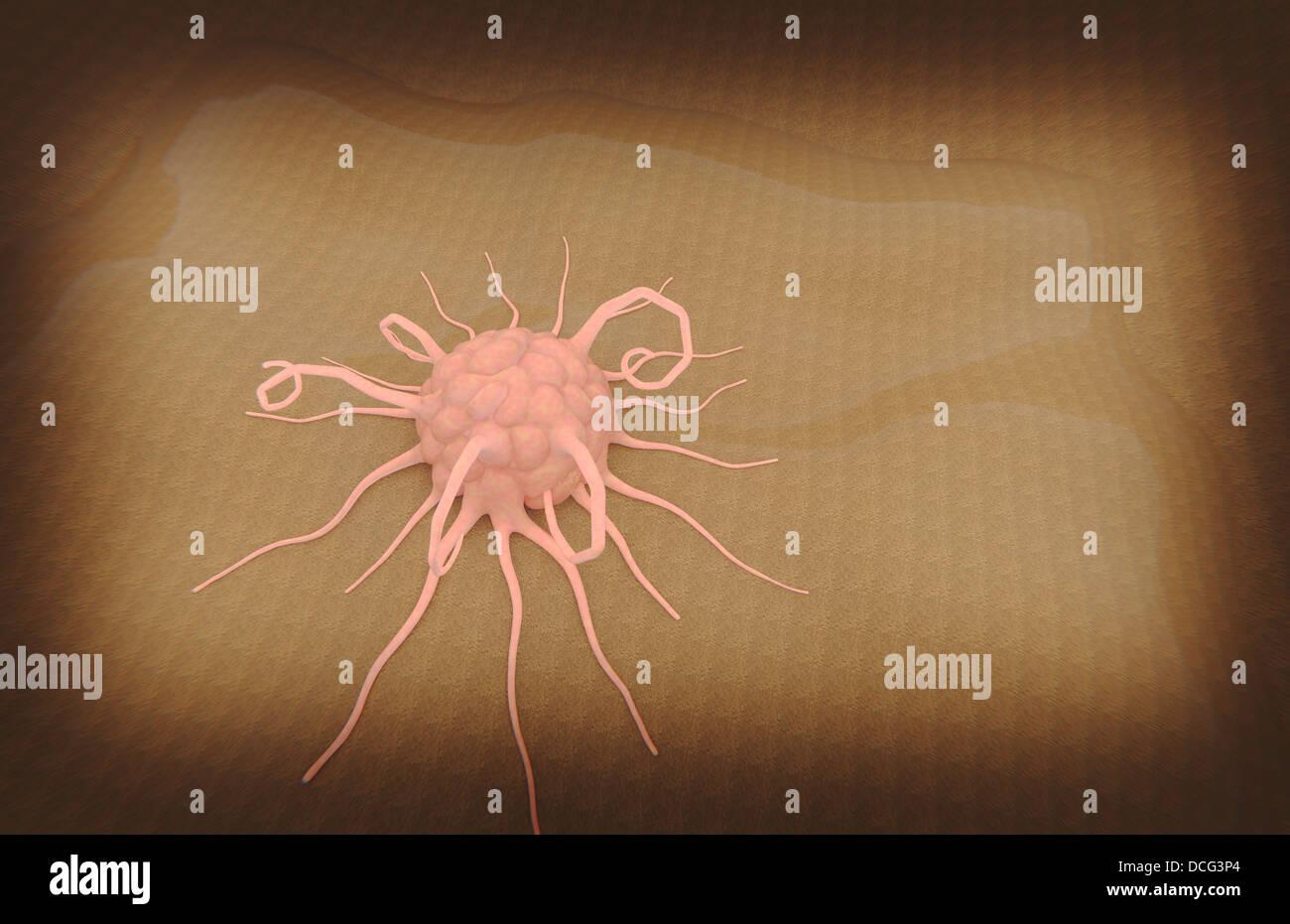 3D rendering of macrophage phagocytosis. - Stock Image