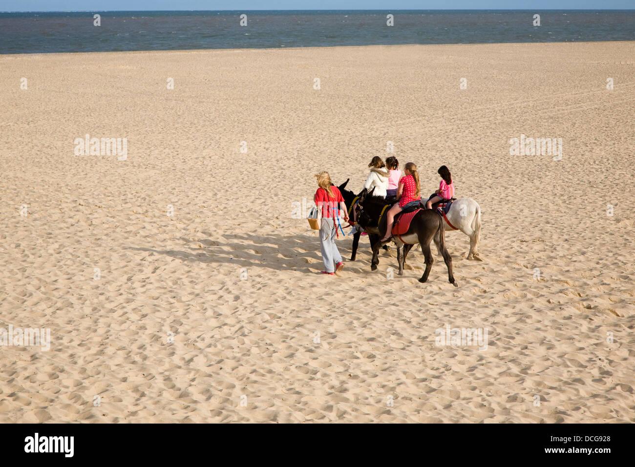 Donkey rides on the beach Great Yarmouth, Norfolk, England Stock Photo