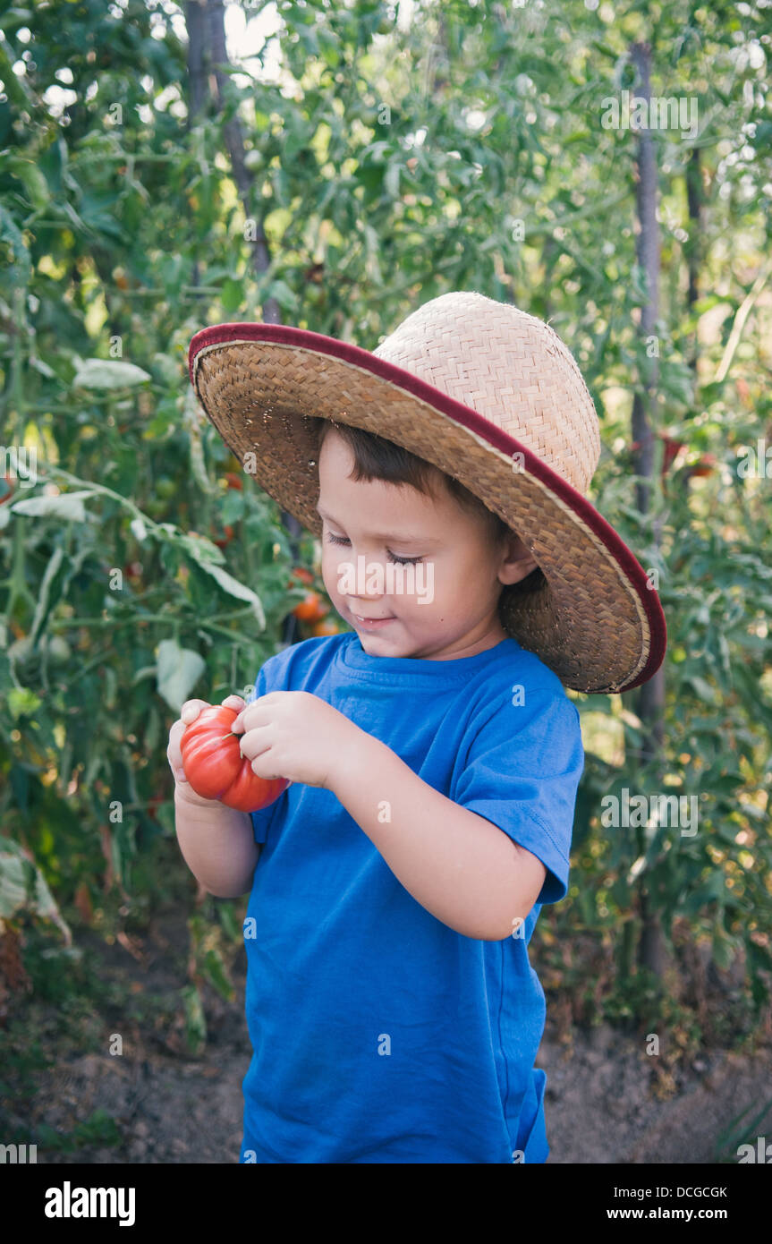 Cute little boy holding tomato - Stock Image