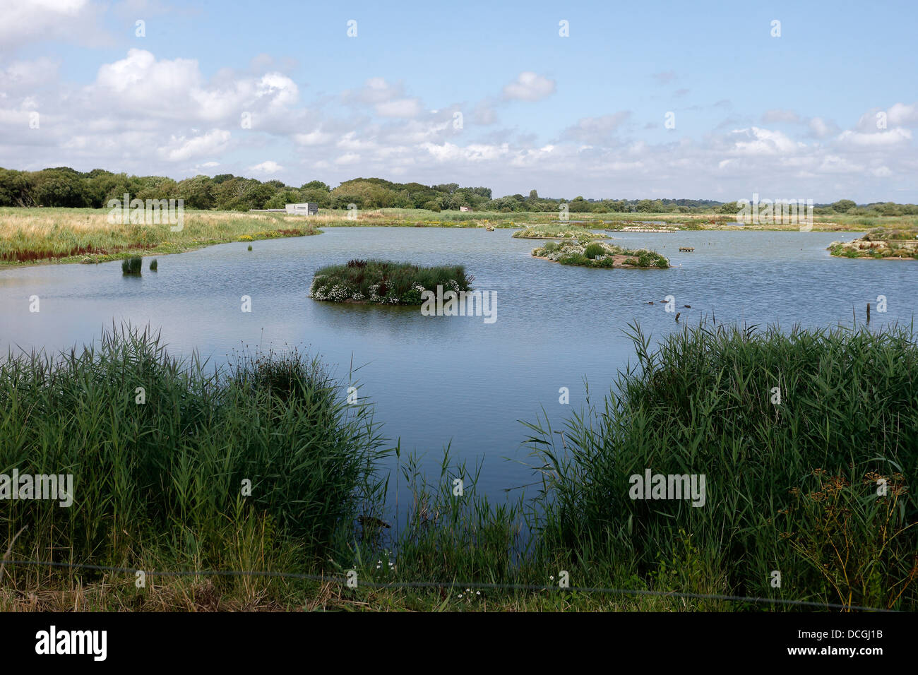 Titchfield Haven, View from Meon Shore Hide, Hampshire, August 2013 - Stock Image