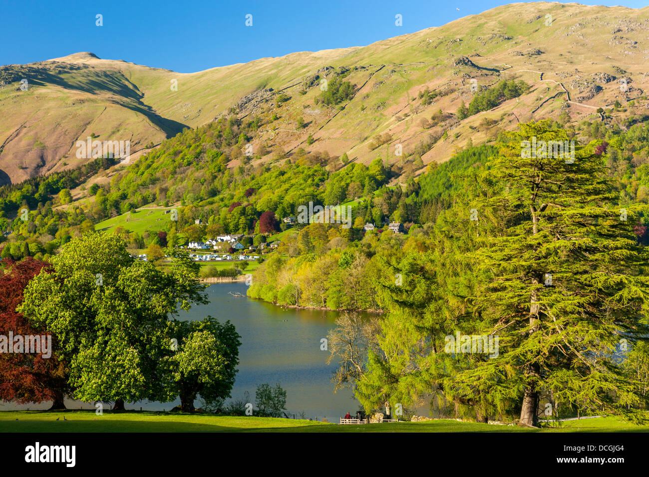 Grasmere Lake, Lake District National Park, Cumbria, England, UK, Europe. - Stock Image