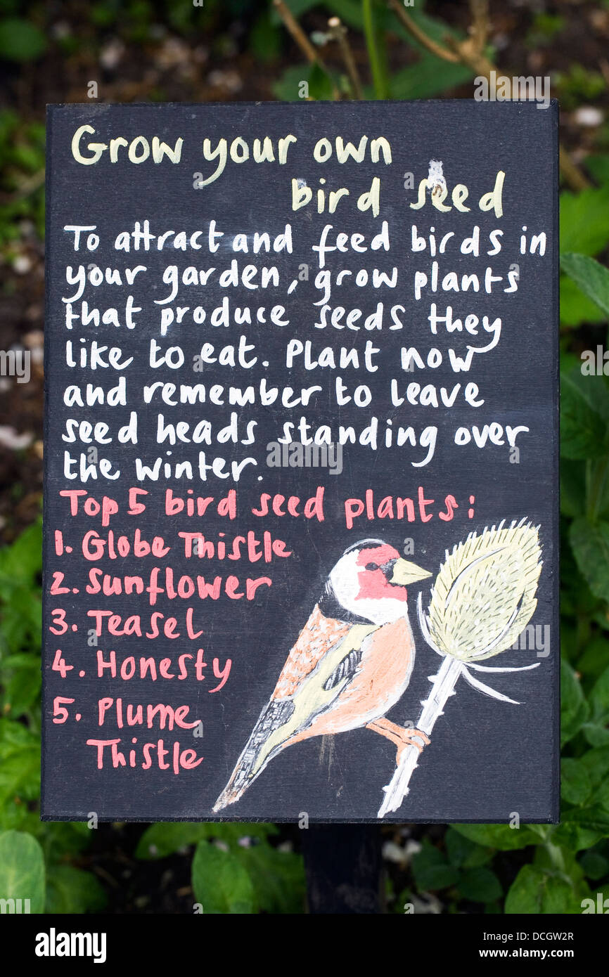 Grow your own birdseed. Information for visitors at Ryton organic gardens. - Stock Image