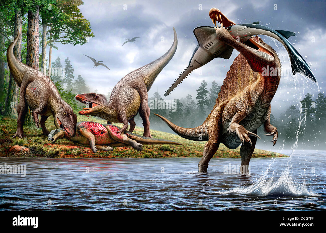 A Spinosaurus hunting an Onchopristis while two Carcharodontosaurus eat the carcass Ouranosaurus in the background.. - Stock Image