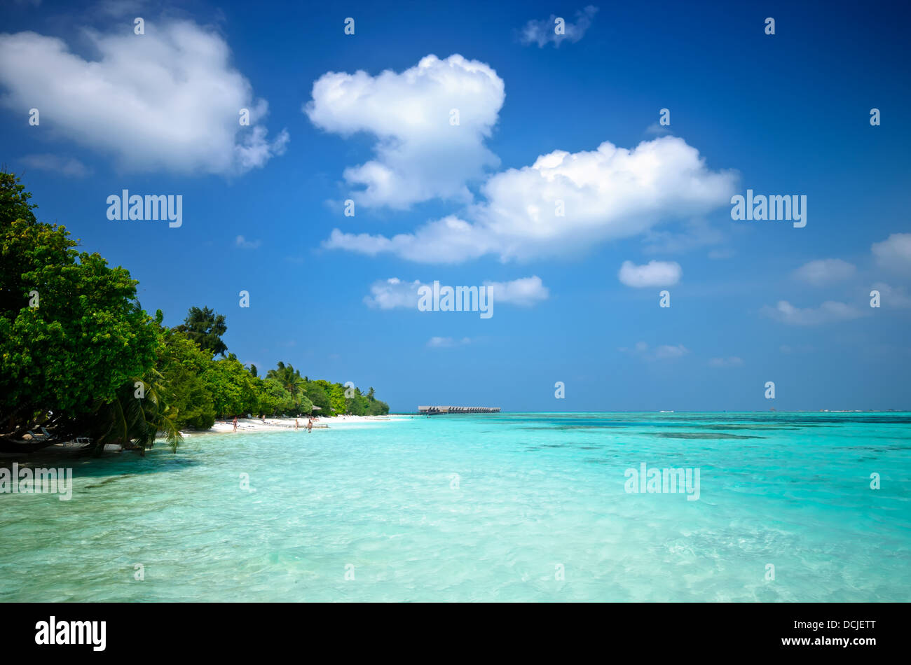 sandy beach and clear blue water of the maledives - Stock Image