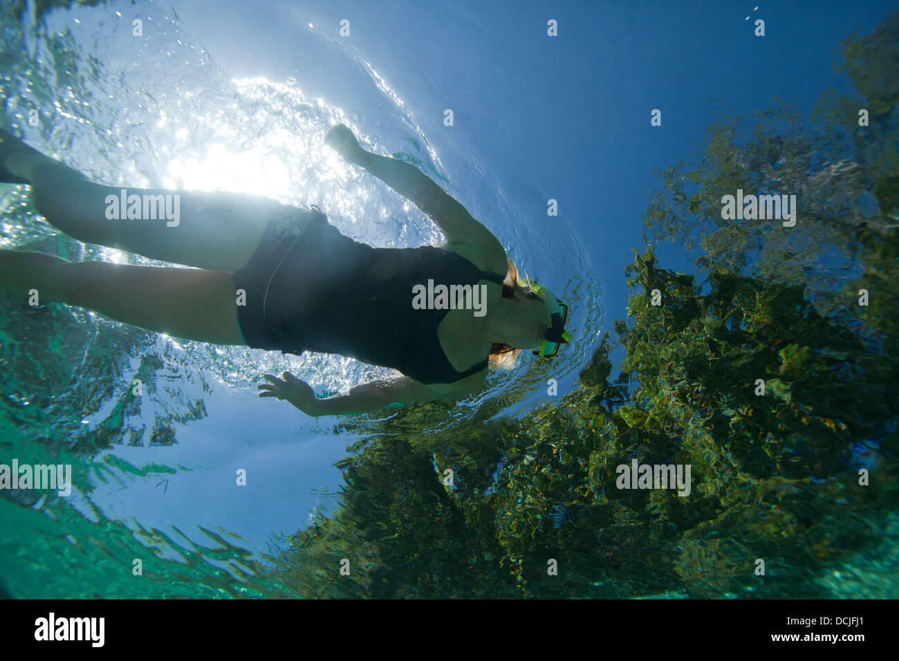 Female model swimming under water with a one piece bathing suit while using a snorkeling mask and snorkel - Stock Image