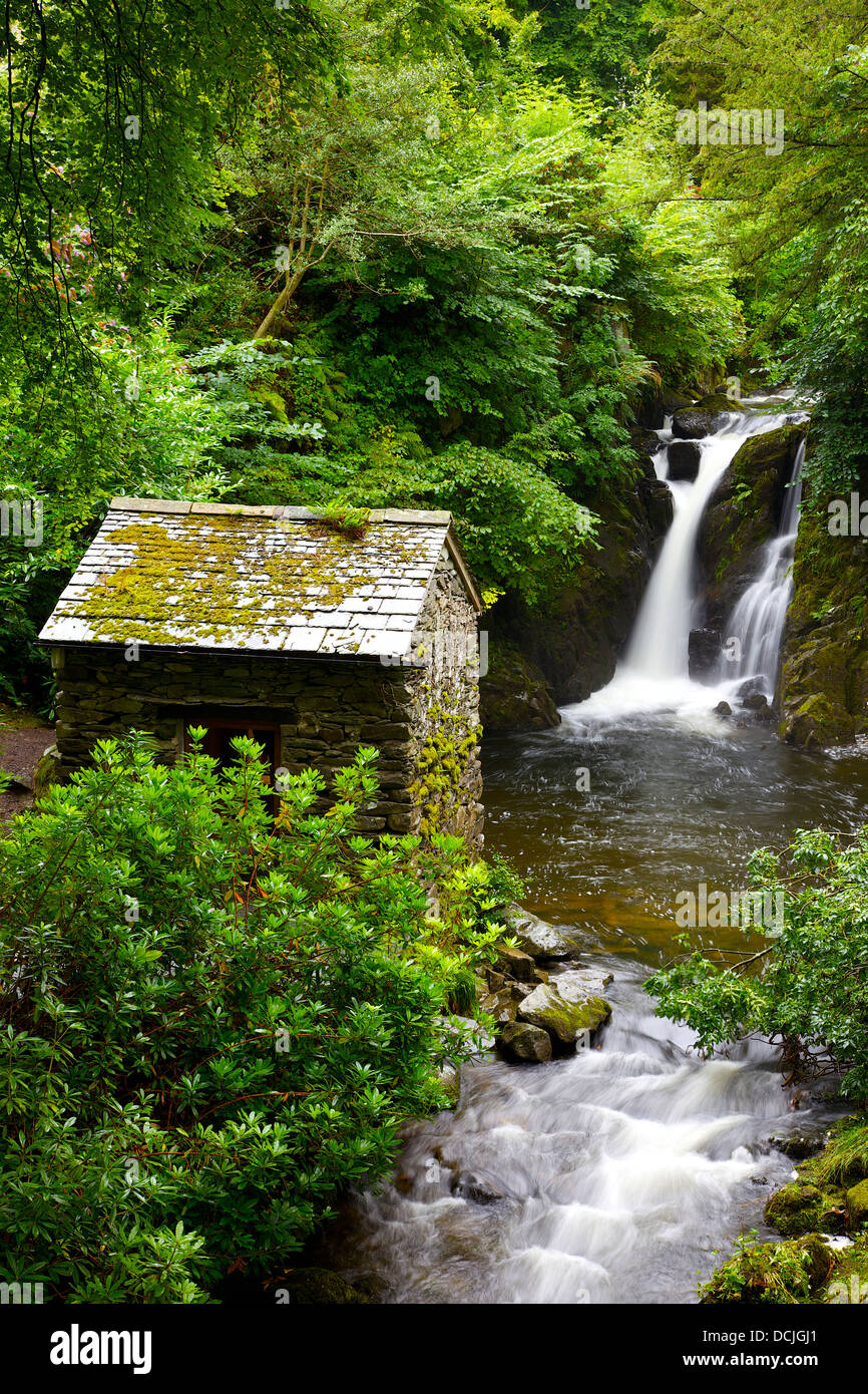 Waterfall and hut in mountain gorge surrounded by bushes and trees. Rydal Hall Ambleside Cumbria England United - Stock Image