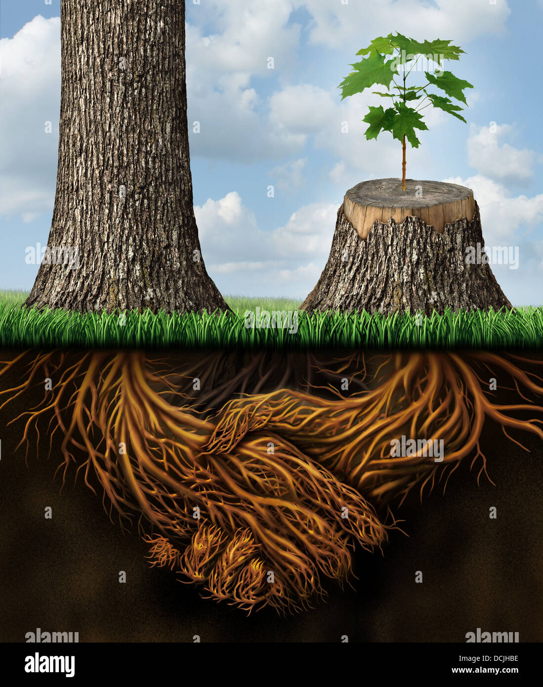Business help and support concept as a tall tree next to a sick stump with a new growth of hope emerging in cooperation - Stock Image
