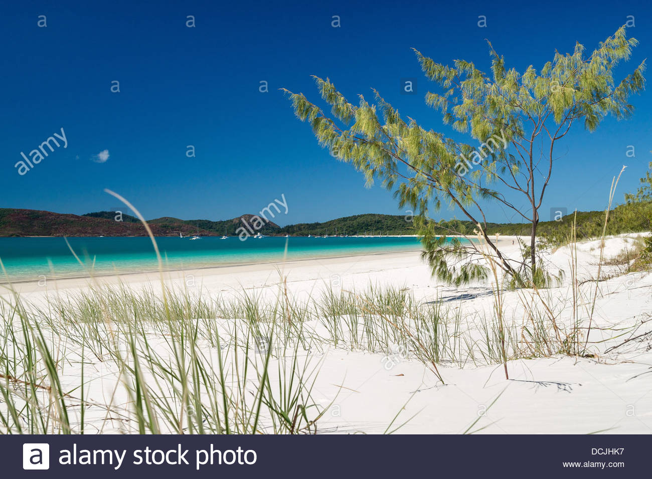 Whitehaven beach on Whitsunday Island - Whitsundays - Australia - Stock Image