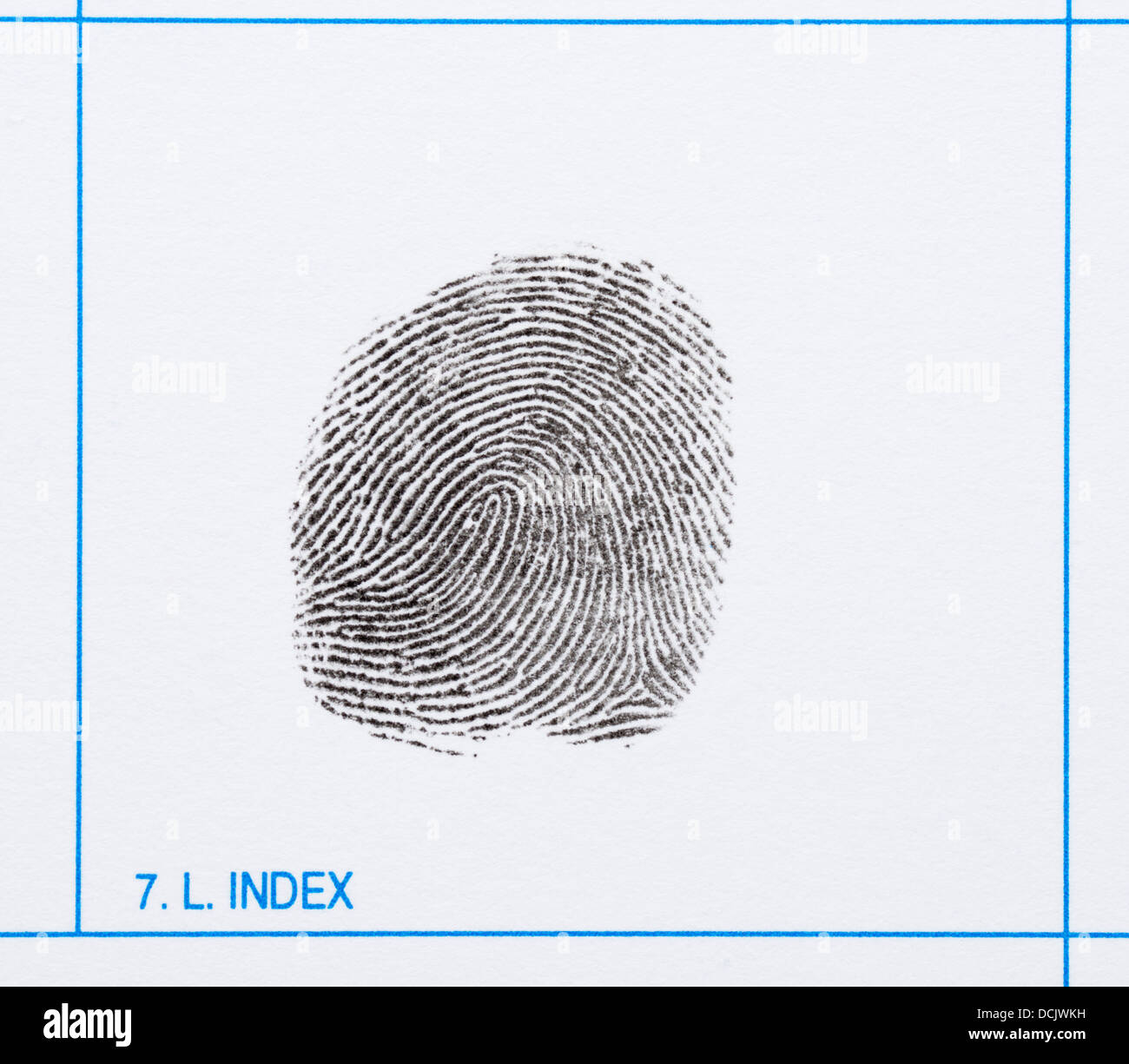 Fingerprint of a left index finger showing a whorl and various minutiae - Stock Image
