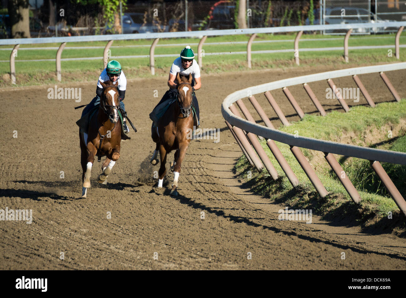 Horse And Rider Morning Exercise Racing Race Track Stock