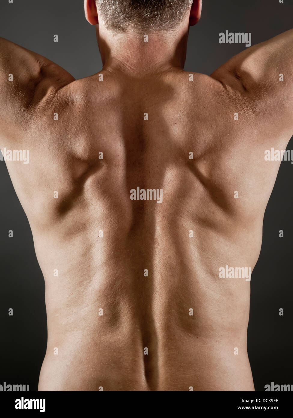 middle age man back side - Stock Image