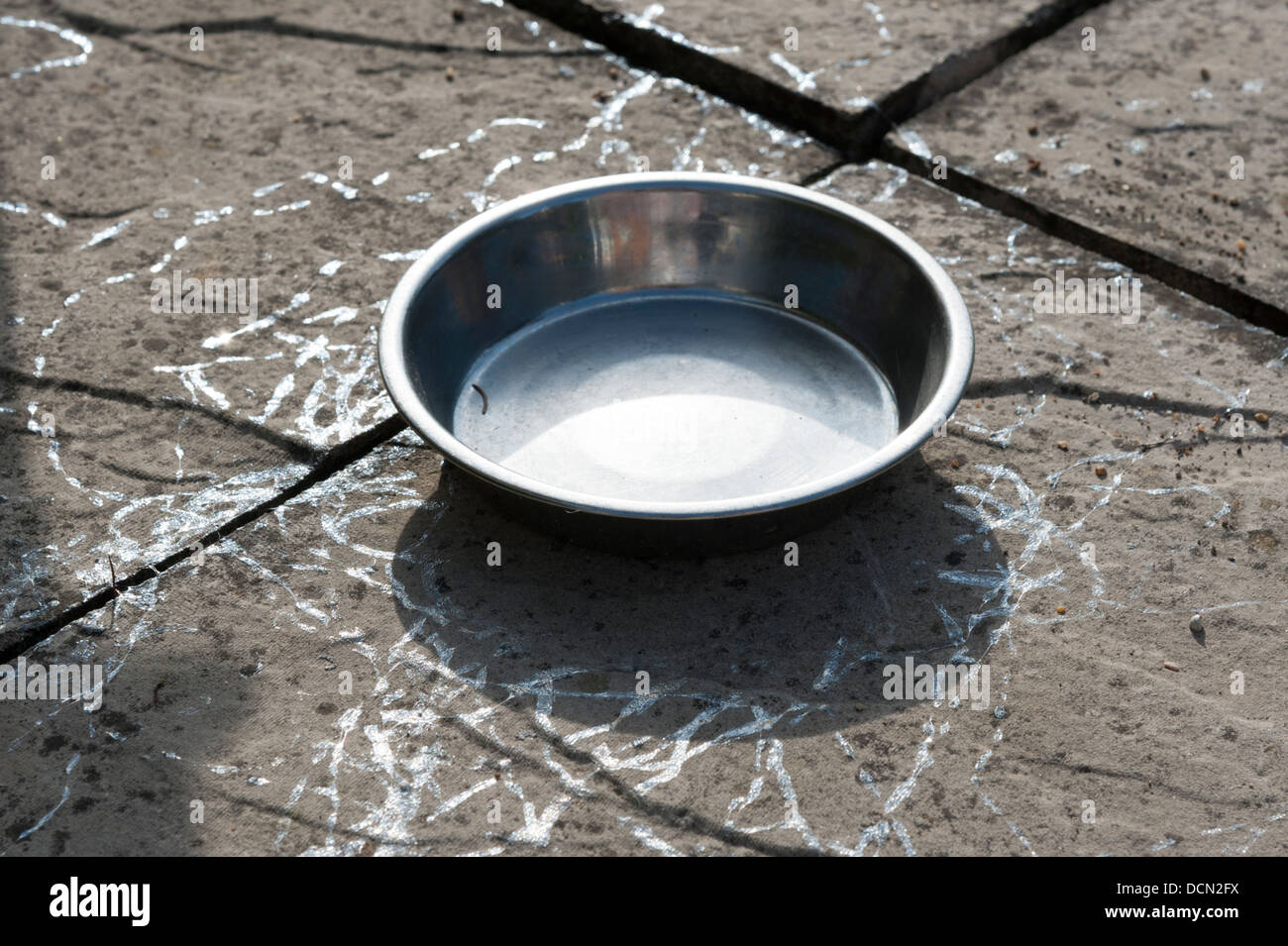 Metal pet food bowl in a garden showing snail and slug trails - Stock Image