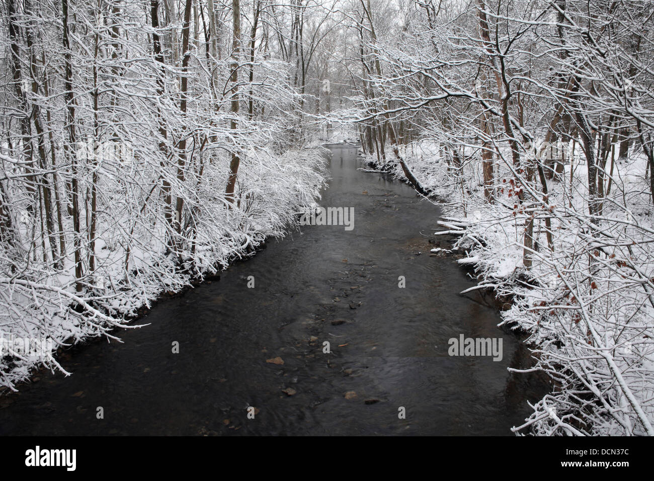 Snow Covered Trees Framing A Little Stream During Winter In The Park, Sharon Creek At Sharon Woods, Southwestern Stock Photo