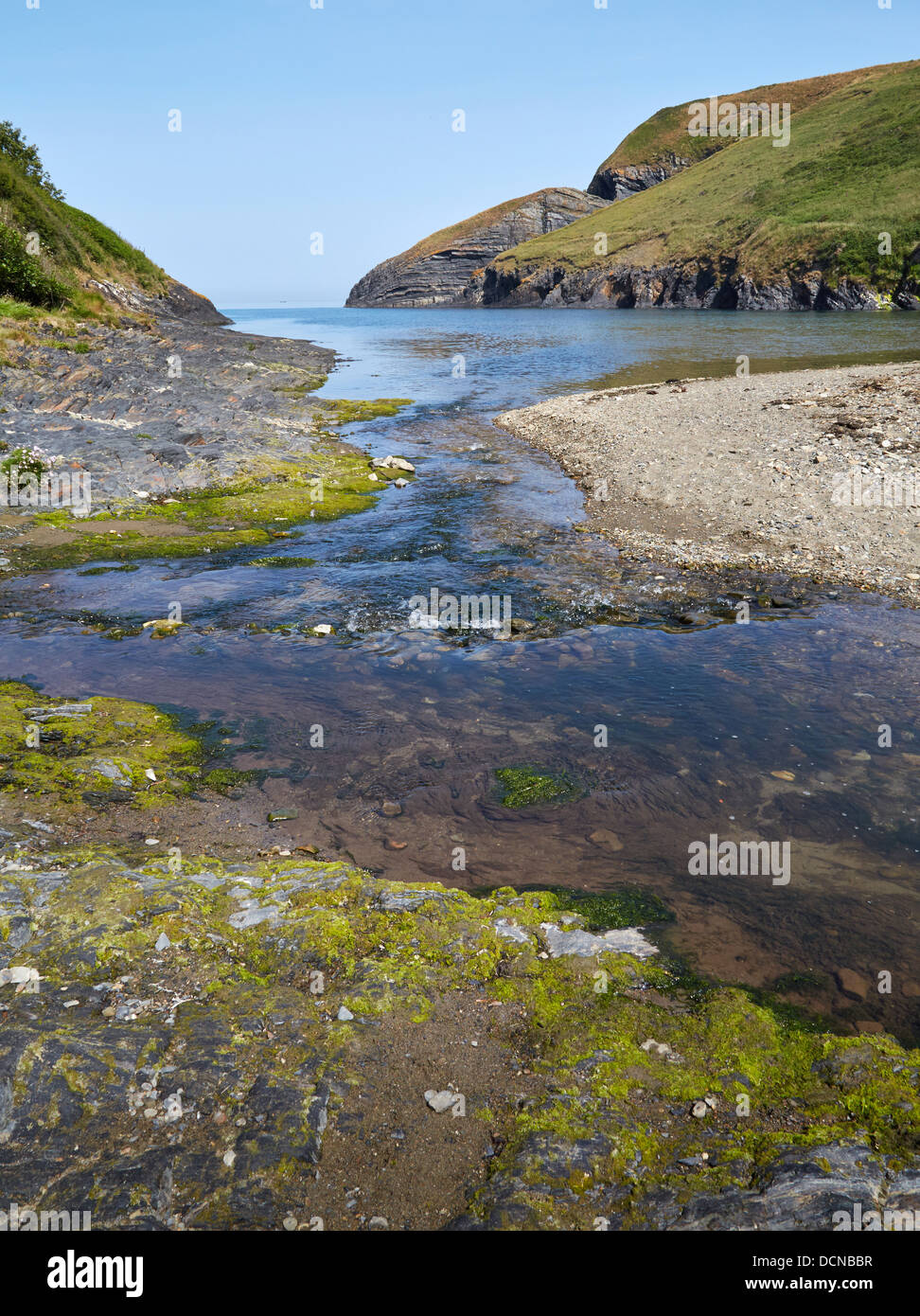 Nant Ceibwr stream entering Cardigan Bay at Ceibwr Bay near Cardigan on the South Wales coast path - Stock Image