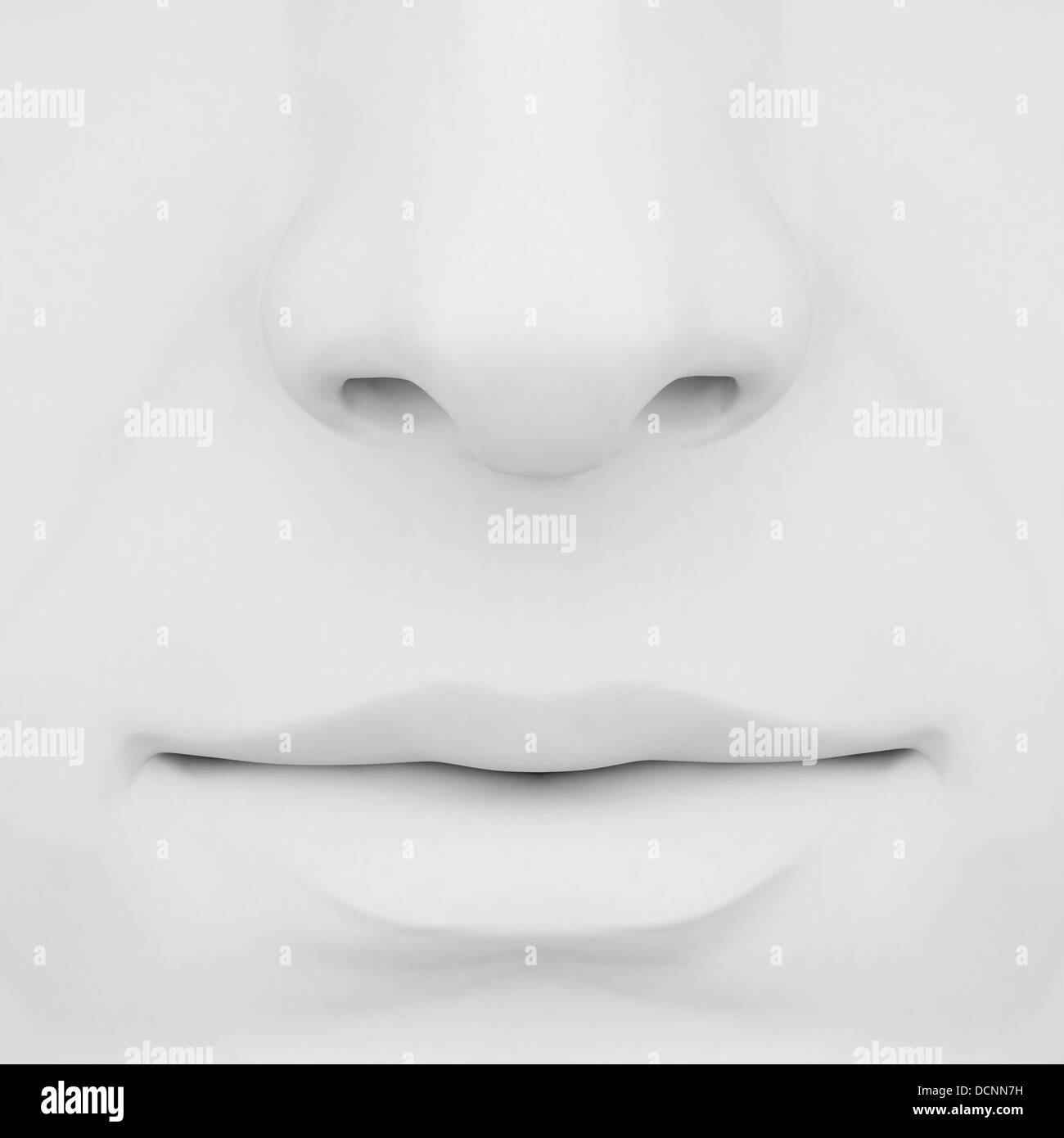 Nose And Anatomy And 3d Stock Photos Nose And Anatomy And 3d Stock
