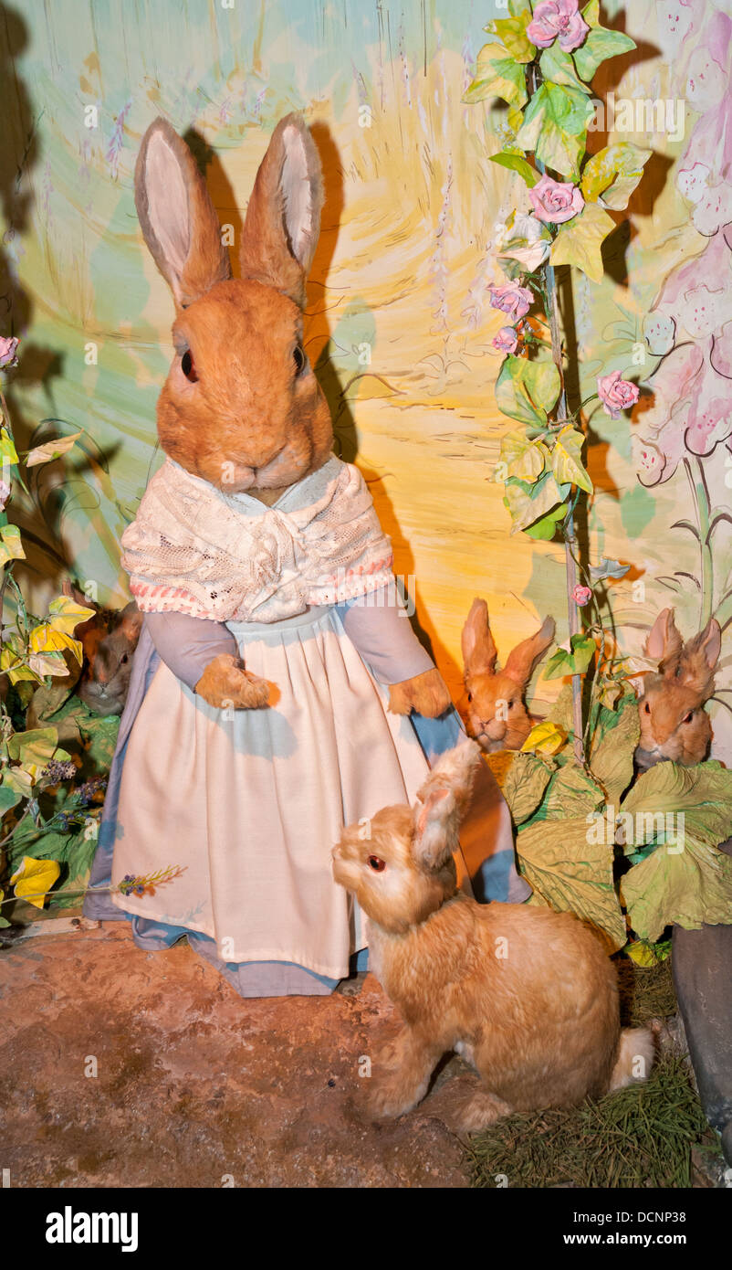 Great Britain, England, Cumbria, Lake District, Bowness-on-Windermere, World of Beatrix Potter, Mrs. Rabbit character - Stock Image
