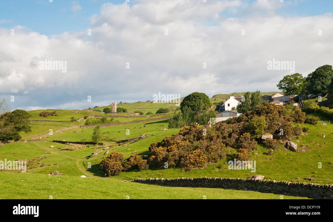 Great Britain, England, Cumbria, Lake District, Crook, Crook Hall Farm Bed and Breakfast, working sheep cattle farm - Stock Image