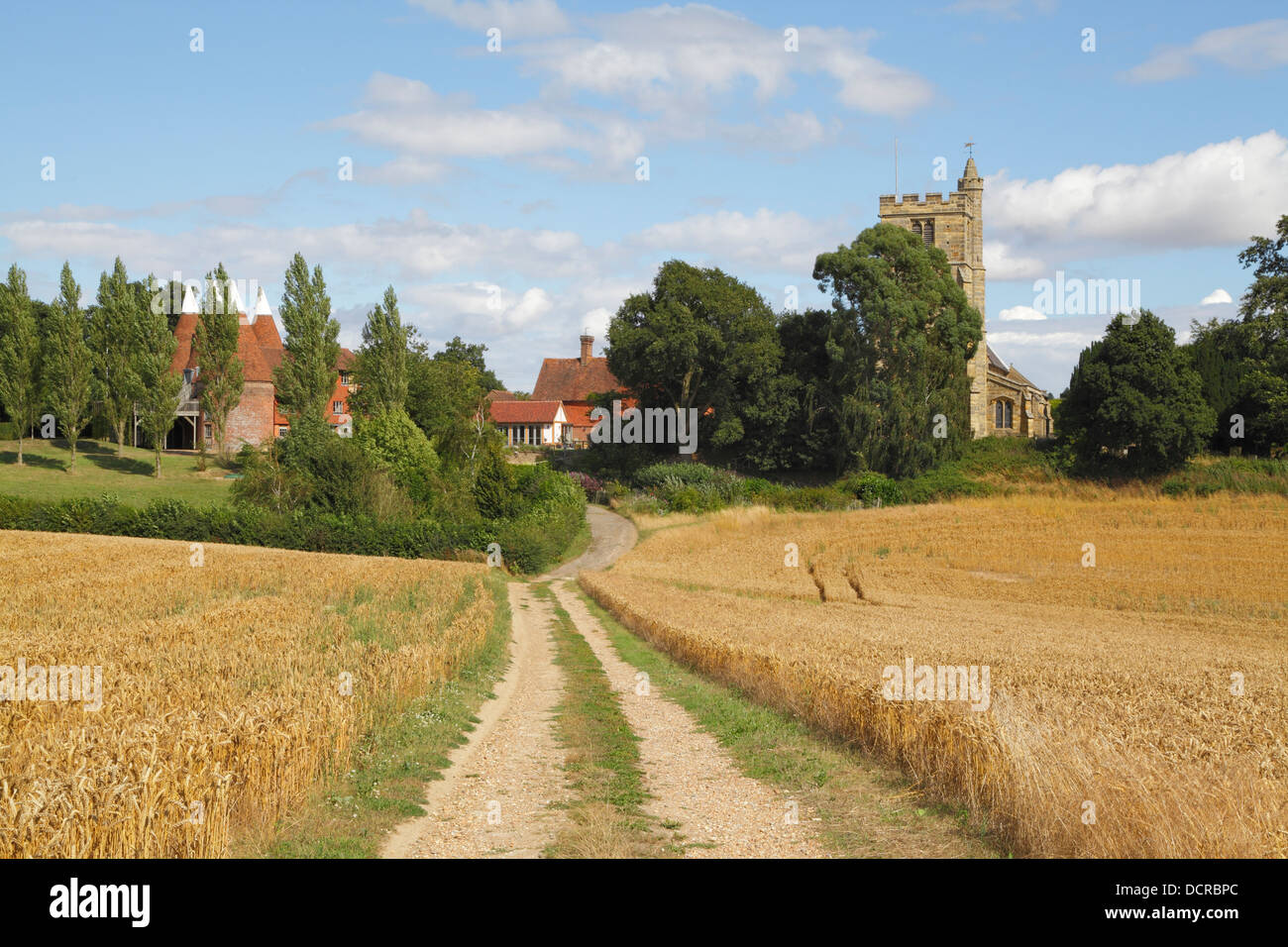 Farm track through wheat fields at harvest time, oast house and St Margaret's church, Horsmonden Kent England - Stock Image