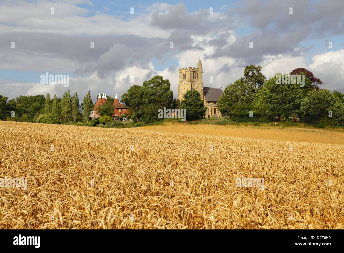 Harvest time in Kent UK. Horsmonden Church and Oast Houses, Kent, England, UK in Wealden Countryside - Stock Image