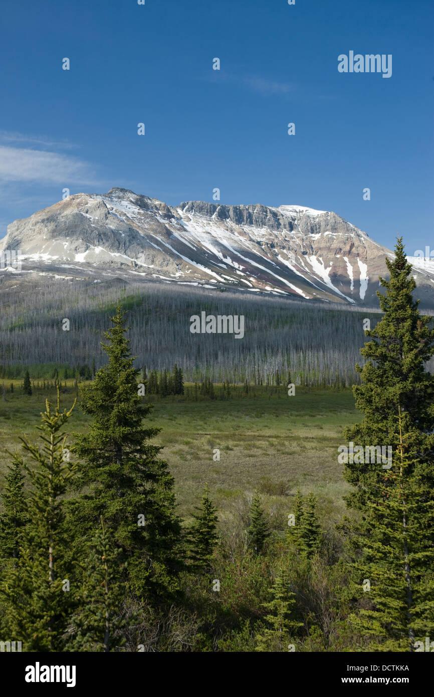 SOFA MOUNTAIN WATERTON LAKES NATIONAL PARK ALBERTA CANADA Stock Photo