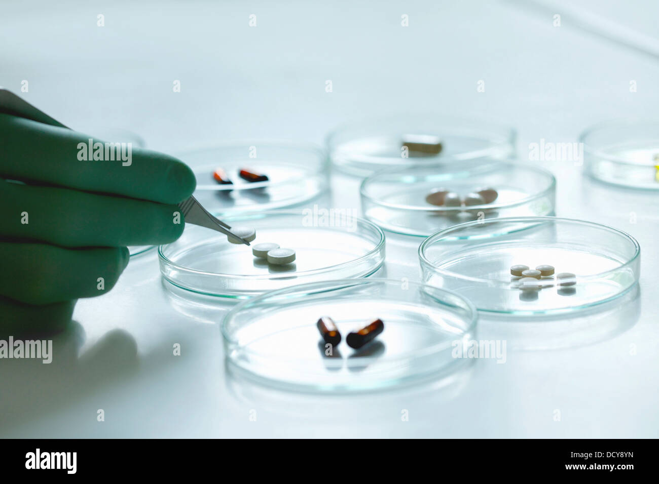 Scientist Holding Pill with Tweezers over Petri Dish Stock Photo