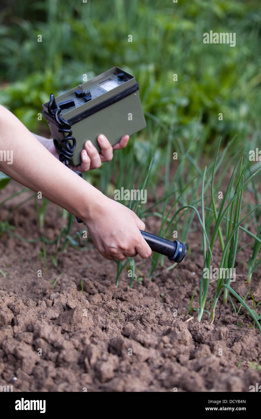 measuring radiation levels of onions - Stock Image