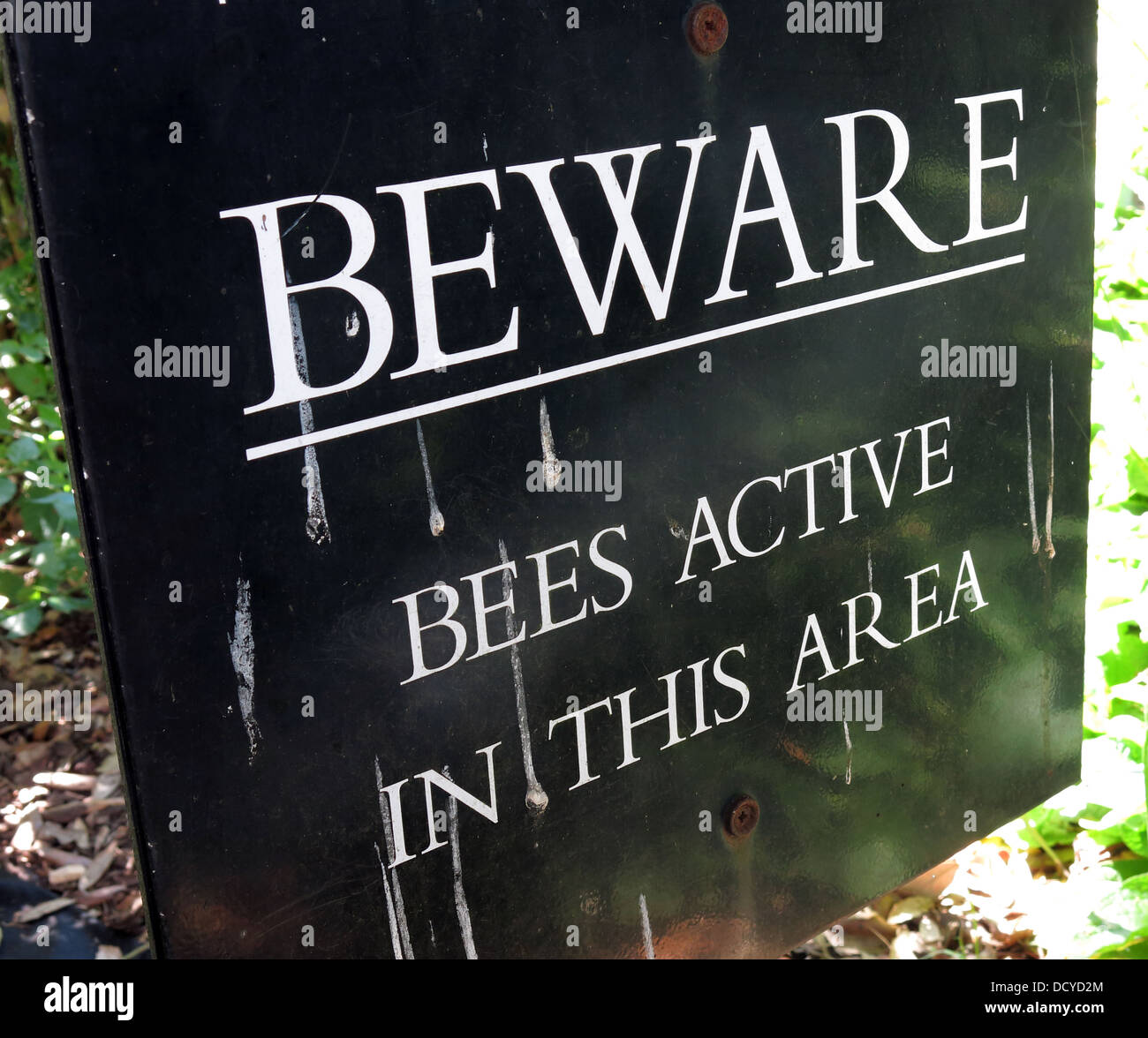 Sign, Beware Bees Active in this area - Stock Image