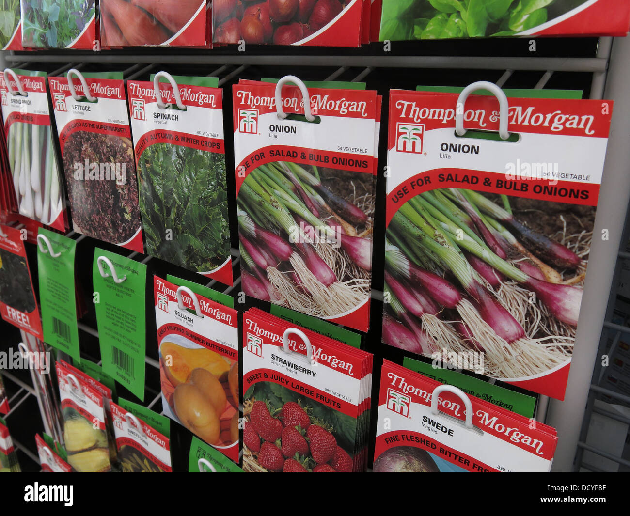 Onion Thompson & Morgan Garden Allotment Seed packets in garden centre / supermarket, now popular again th Great - Stock Image