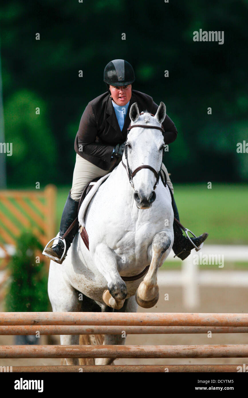 A horse and rider jumping a fence at a horse show. - Stock Image
