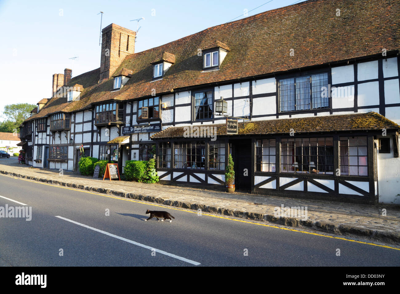 Black and white cat crossing road in front of medieval weavers' houses, Maydes Restaurant, Biddenden, Kent, England, Stock Photo
