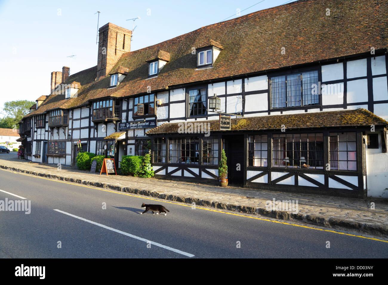 Cat crossing road in front of medieval weavers' houses, Maydes Restaurant, Biddenden, Kent, England, UK - Stock Image
