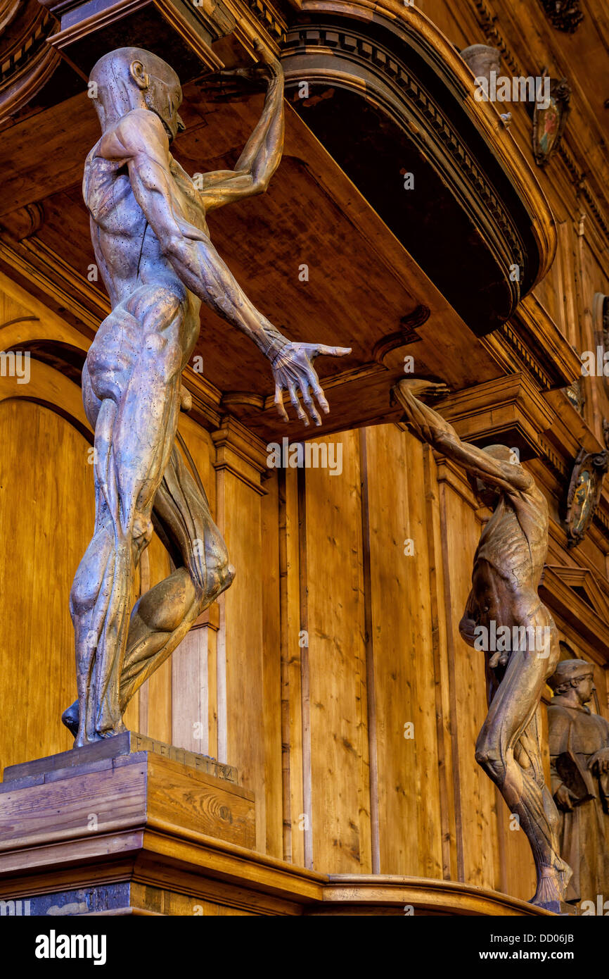Palazzo Archigennasio Anatomy Lecture Theatre Detail Of Two Wooden