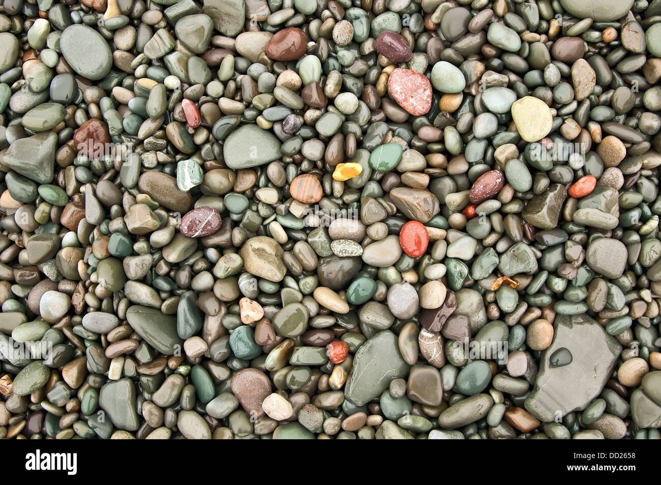 Seashore pebbles, Atlantic ocean - Stock Image
