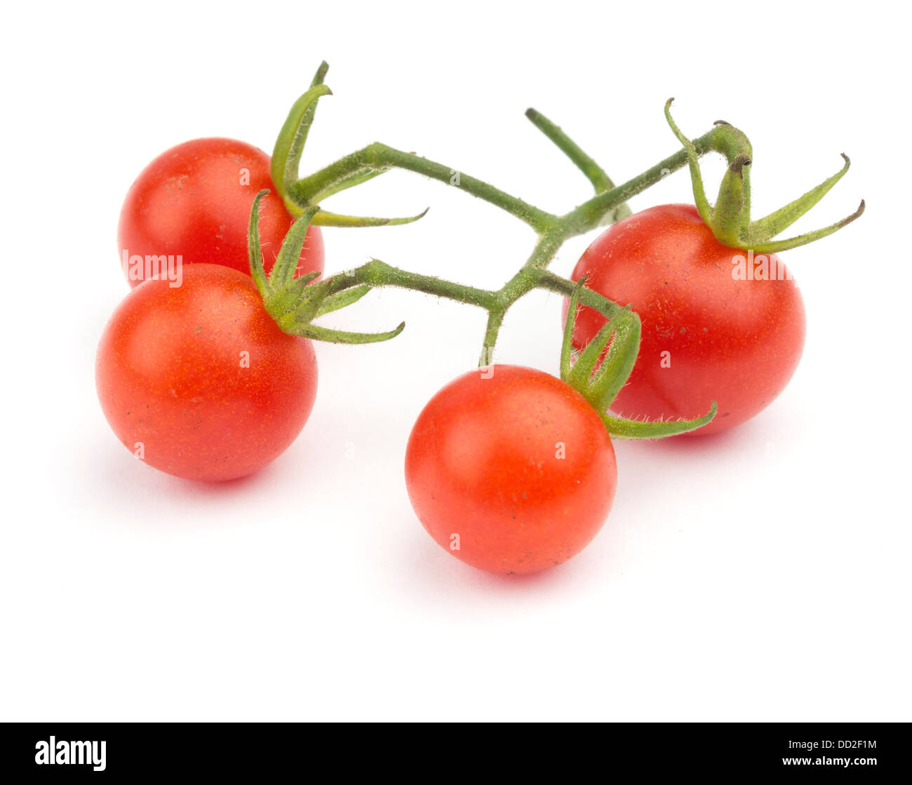 Fresh cherry tomatoes cut out isolated on white background Stock Photo