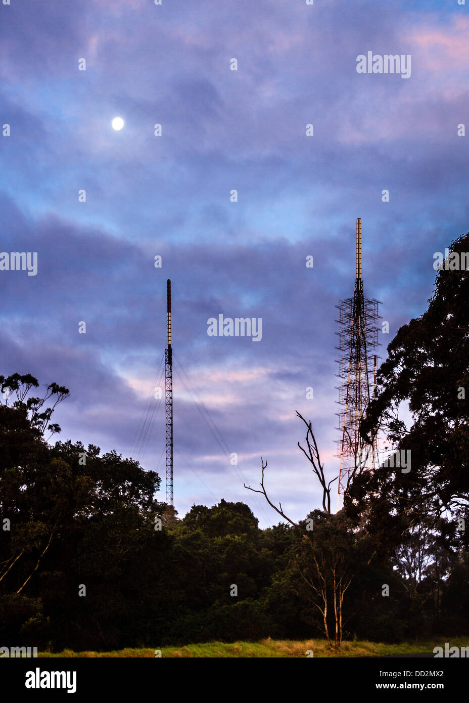 Mobile or cell phone masts in the Australian bush, under a full moon and a pink and purple twilight sky. Technology - Stock Image