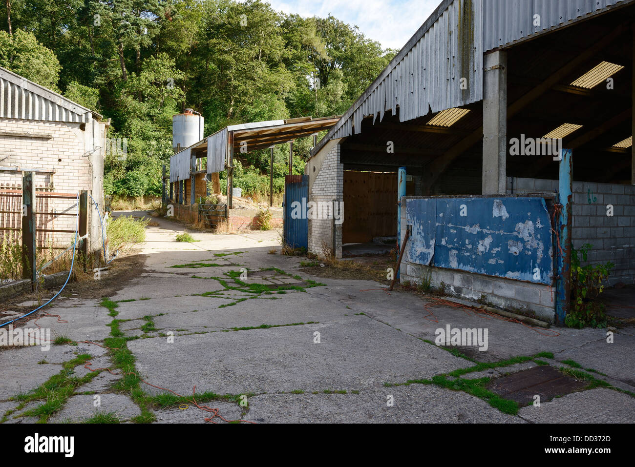 Abandoned and derelict farm buildings Cheshire UK - Stock Image