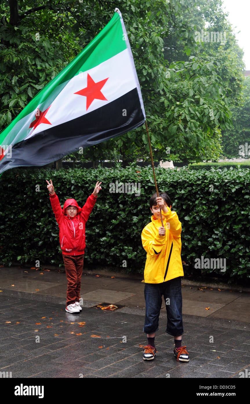 London25th August 2013 : Protesters waving flag protest against of the chemical weapons attacked by Assad's - Stock Image